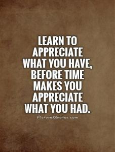 learn-to-appreciate-what-you-have-before-time-makes-you-appreciate-what-you-had-quote-1